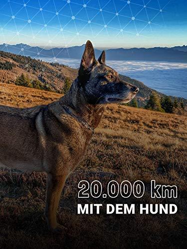 20.000 km mit dem Hund