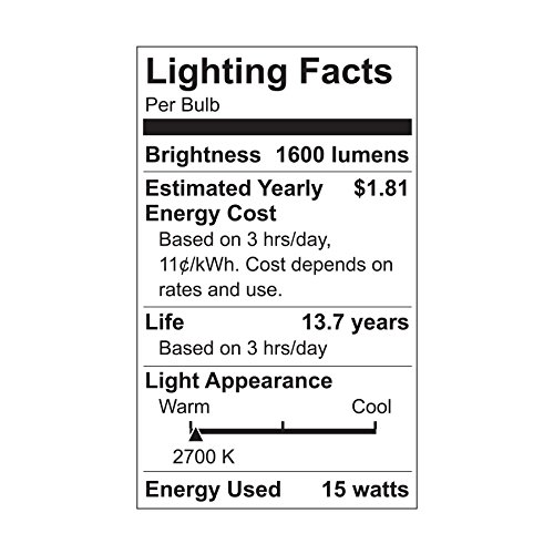 GE Lighting 63857 LED Brightstik 15-watt (100-watt Replacement), 1600-Lumen Light Bulb with Medium Base, Soft White, 2-Pack