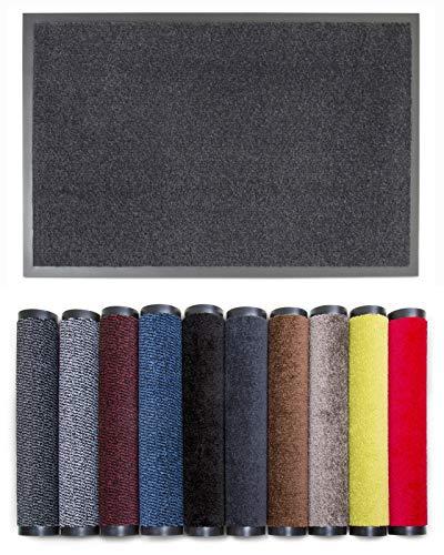 Carpet Diem Rio C Schmutzfangmatte - 5 Größen - 10 Farben Fußmatte mit äußerst starker Schmutz und Feuchtigkeitsaufnahme - Sauberlaufmatte in dunkel grau - anthrazit 40 x 60 cm