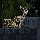famlights - Weihnachtsdeko Aussen für eine tolle Beleuchtung & Licht- Weihnachtsdeko Outdoor kabelgebunden - LED Weihnachtsdeko für eine Eindrucksvolle Deko außen