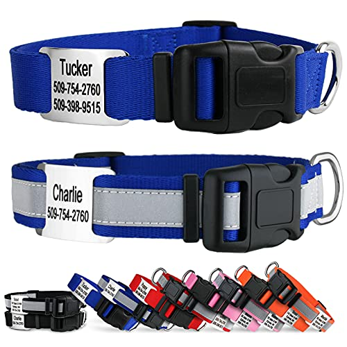 GoTags Reflective Personalized Dog Collar with Nameplate, Adjustable Dog Collar with Custom Engraved Slide On Pet ID Tag in Stainless Steel, Silent, No Noise Dog ID Tag (Blue, Large)