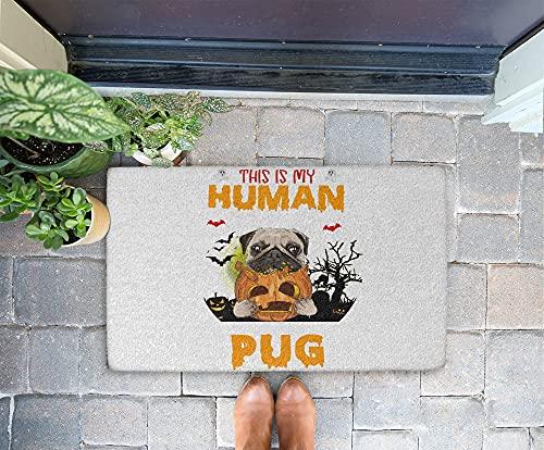 Halloween Doormat - I'm Really A Pug 24x16 Inch Outdoor Front Door Mat Kitchen Mat for Floor Welcome Home