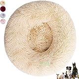 Cuccia Cane Interno, Cuscino per Cani Grandi, Cuccia Pelosa per Cani e Gatti Grandi e Piccoli Lavabile (70 cm, Beige)