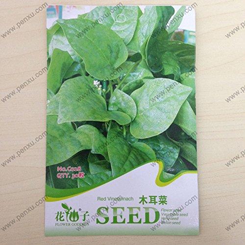 Paquet original graines de légumes, graines d'épinard rouge Malabar, floraison maturée 50 jours, 30 particules de graines/sac.
