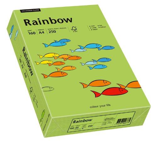 Papyrus 88042659 Drucker-/Kopierpapier bunt, Bastelpapier Rainbow: 160 g/m², A4, 250 Blatt, Matt, Grün