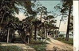 "Categories: US State & Town Views,Florida,Ormond Type: Postcard Size: 3.5"" x 5.5"" (9 x 14 cm) Publisher: Hugh C. Leighton Co."
