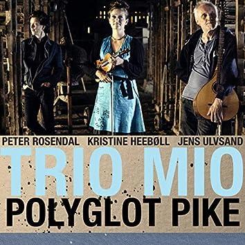 Polyglot Pike (feat. Peter Rosendal, Kristine Heeboll, Jens Ulvsand)