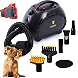 Free Paws Negative Ions Dog Dryer 4.0 HP 2 Speed Adjustable Heat Temperature Pet Dog Grooming Hair Dryer Blower Professional with 5 Different Nozzles and a Shower Massage Glove (Black)