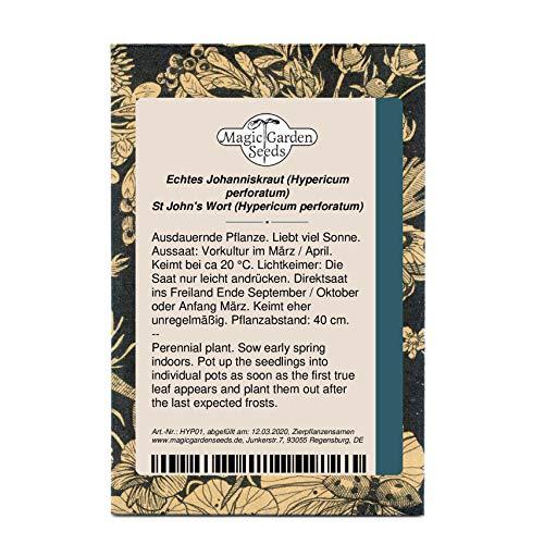 Echtes Johanniskraut (Hypericum perforatum) 1400 Samen Herrgottsblut