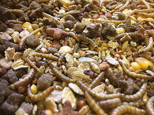 cura-canin 10 Kg Premiumfutter Igelfutter Wildtierfutter Trockenfutter für Igel Winterfutter
