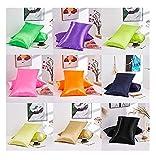 dozenla 2 Pcs Breathable Pillow Case Soft Silk Pillowcase Solid Color Pillow Cover Home Decor Pillowcases