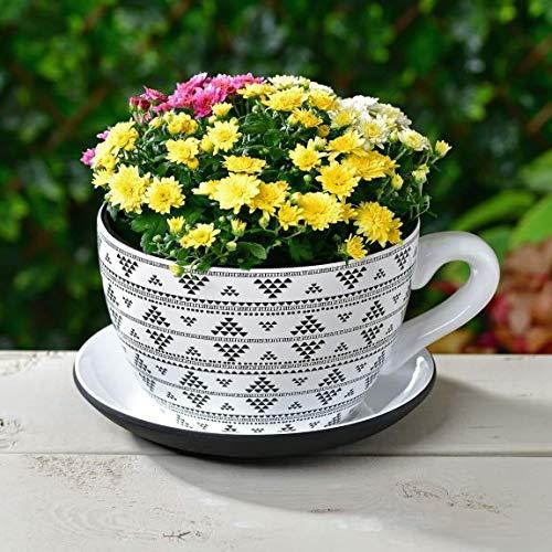 Z&Q BROS LTD Fabulous Decorative Feature Giant Teacup & Saucer Planter Flowers Pot Garden Ornament - Urban Wilderness