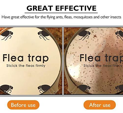 Sumeber Klebrige Kuppel Smart Trap + 2 Leimscheiben; Wirksam Gegen Flöhe, Mücken und Andere Kleine Insekten (SK111) - 7