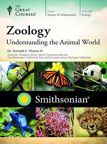 Zoology of Mammals