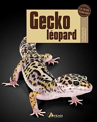 Gecko leopard (Le guide Terrario)