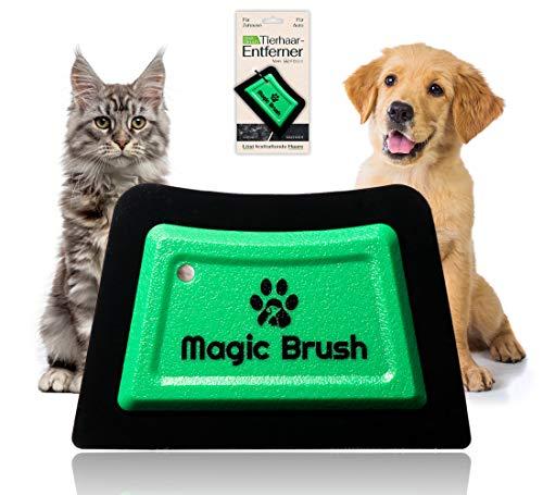 WERCH® Magic Brush Tierhaarentferner für Hundehaare und Katzenhaare, Fusselbürste für Tierhaare von Sofa, Bett und Teppich zu entfernen, Hundehaarentferner, Katzenhaarentferner für zu Hause und Auto