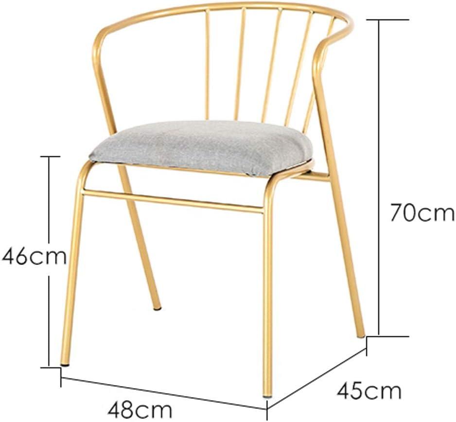WDX- Chaise de Salle, Chaise de Bureau Simple, créative Dossier, Chaise Loisirs, Maison Adulte Chaise de Salle Confortable (Color : Dark-Grey) Golden-pink