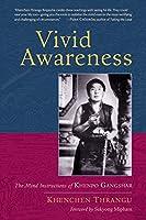 Vivid Awareness: The Mind Instructions of Khenpo Gangshar