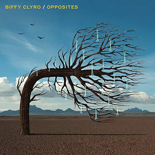 Opposites [Vinyl LP]