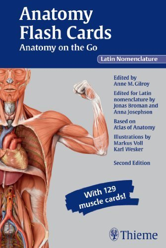 Download Anatomy Flash Cards: Anatomy on the Go, second edition, Latin Nomenclature 1 Flc Crds Edition by Gilroy, Anne M (2013) Hardcover B011DB4XMU