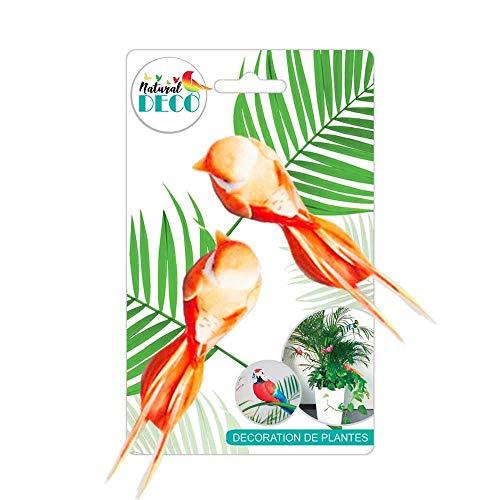 STC Déco Plantes – Lot de 2 Oiseaux Orange B CD3843