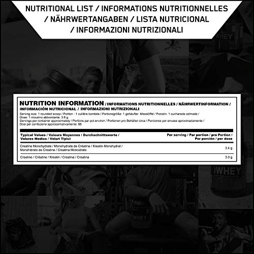 Optimum Nutrition Micronised Creatine Monohydrate  formulated for Muscle Development by ON - Unflavoured, 88 Servings, 317g