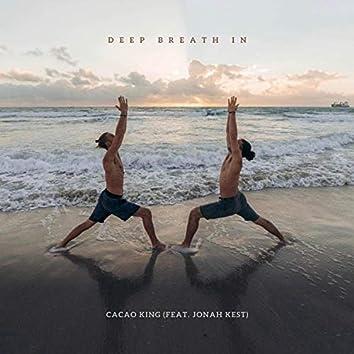 Deep Breath in (feat. Jonah Kest)
