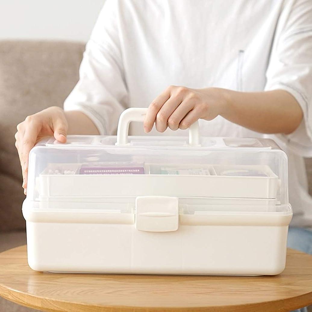国籍推進、動かすイデオロギーSGLI 多層薬箱、ポータブル家庭用大容量家族救急箱、プラスチック製の薬箱 (Size : 31cm×16cm)