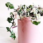 potey-ceramic-planter-flower-plant-pot-4961-with-drain-hole-full-depth-cylinder-minimalism-for-indoor-planters-set-of-2-light-pink