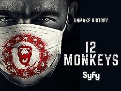 12 Monkeys