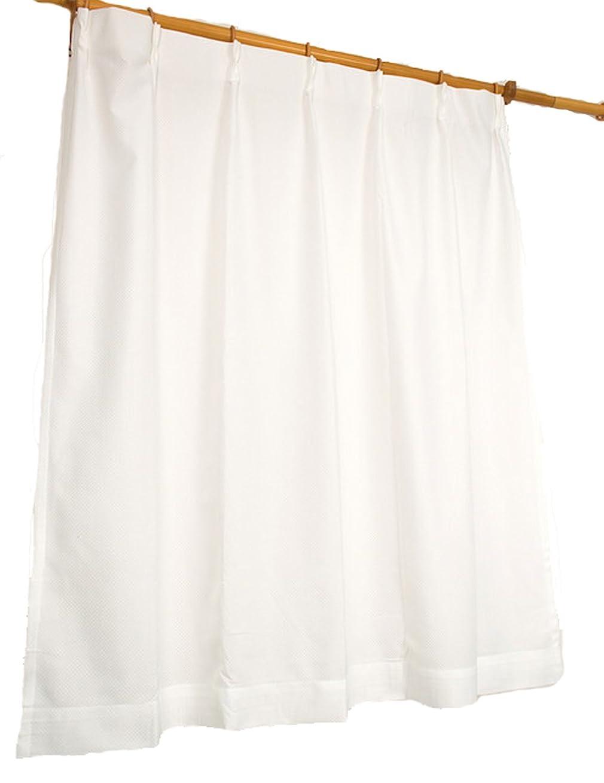 食い違い陰気冷淡なオーダーカーテン 形状記憶加工 遮光カーテン ワイン 幅80cm 丈114cm フックA ウォッシャブル ドレープ 1枚組 A-763545