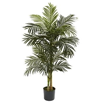 Best palm leaf plant Reviews