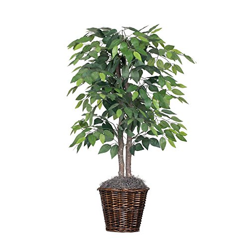 Vickerman Artificial Ficus In Decorative Rattan Baskets