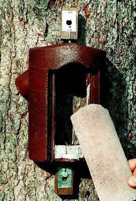 Erdtmanns 510160 Holzbetonhöhle für Baumläufer