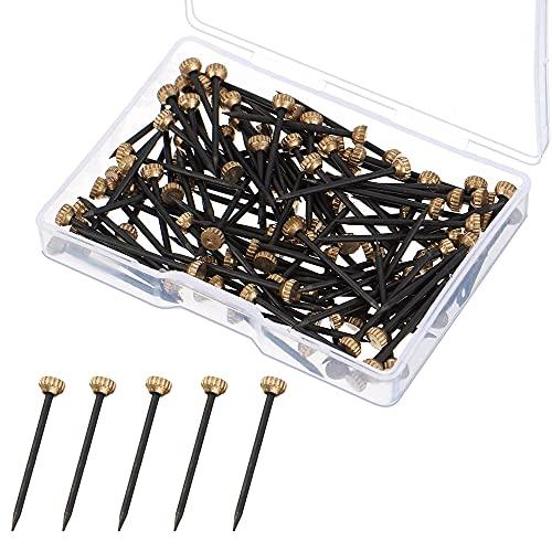 50 PCS Clous de Suspension, Cintres Photo Clous Cintres Clous de Cadre Photo Picture Pins avec Boîte de Rangement en Plastique