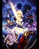 Fate Stay Night Poster Anime Wall Saber Home Decor Zero Japanese Rin Japan Promo Tohsaka Works Cos Unlimited Blade 16x20 Inches