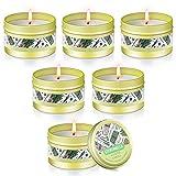 vicbay candela citronella set esterno ed interno, 6 x 2.8oz giardino candele citronella per donna casa, 100% cera di soia naturale, 90-120 ore bruciando per campeggio, festa, terrazza, piscina …