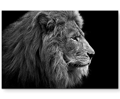 Eau Zone Wandbild auf Leinwand 120x80cm Portrait Löwe schwarz/weiß