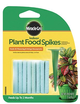 Scotts Miracle-Gro plantes d'intérieur Pointes de nourriture