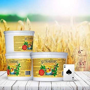 LAFEBER'S Classic Nutri-Berries Nourriture pour Oiseaux pour Animaux domestiques, fabriquée avec des ingrédients Non OGM et de qualité Humaine, pour Cockatiels, 4 lbs