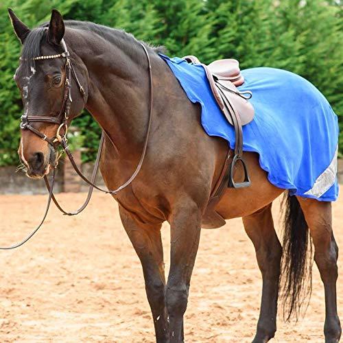 Best On Horse WoW - Hoja de ejercicios para montar a caballo