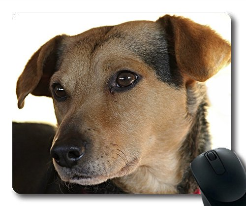 Lovely Pug Dog Gaming Mouse Pad,Dog Hybrid Mixed Breed Dog Portrait Pet Animal,Dogs Mouse mat