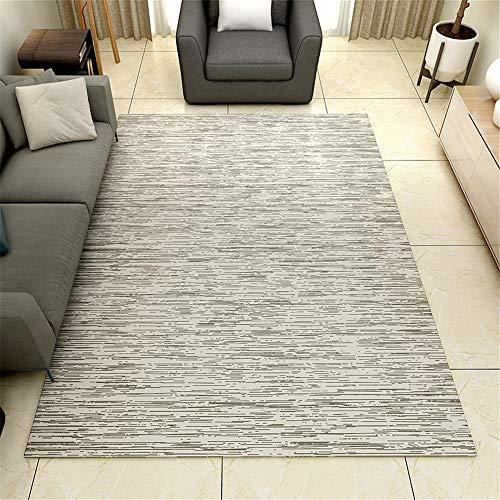 WBDYMX tapijt, antislip, voor thuis, woonkamer, kinderkamer, thuis, decoratief 180 * 300cm 10 Correas