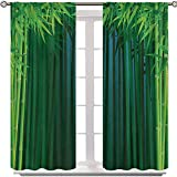 Aishare Store Rod Pocket Window Panels, Stems with Leaves Exotic Lands Fantasy Zen Garden Ecology Theme, 48 Inches Long Noise Reducing Curtains Elegant for Living Room(2 Panels)