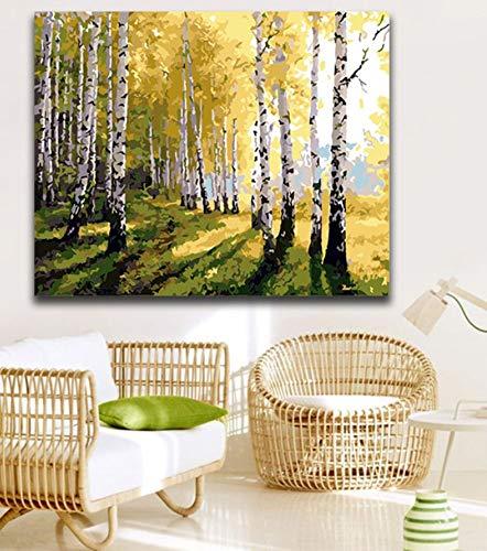YUUWO DIY-Farbstoffe Malen Nach Zahlen Mit Farben Birkenwald Eindruck Woods Landschaft Bild Zeichnung Malen Nach Zahlen Rahmenlos 40x50cm