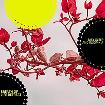 Breath Of Life Retreat - Easy Sleep And Insomnia