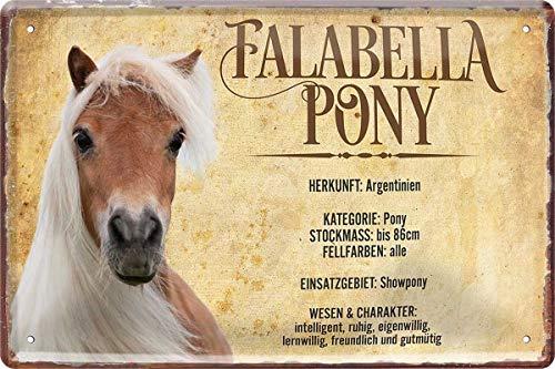 N / A Falabella Pony Pferd Horse Steckbrief 20 x 30 cm Deko Spruch Blechschild Blech 444