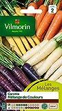 Vilmorin 3174042 Carotte, Multicolore, 90 x 2 x 160 cm