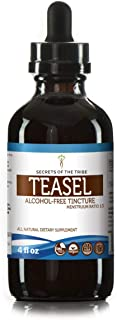 Teasel Alcohol-Free Liquid Extract, Organic Teasel (Dipsacus fullonum, Dipsacus sylvestris) Dried Root (4 FL OZ)