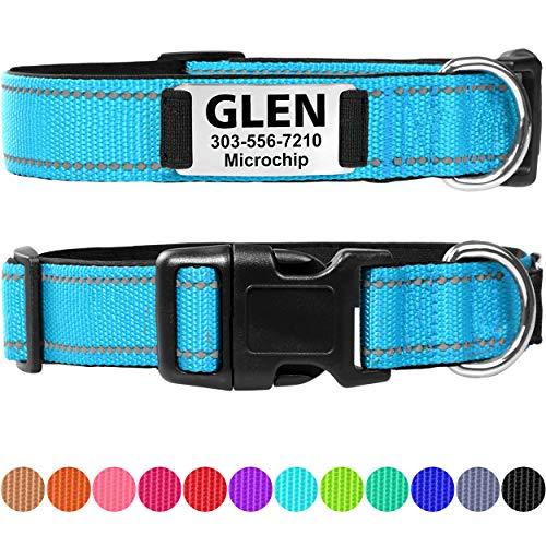 Taglory Hundehalsband mit Name, mit Edelstahl Erkennungsmarke Personalisiert, Hellblau Hundehalsband Gepolstert für Kleine Mittlere Große Hunde, Verstellbar und Feflektierend
